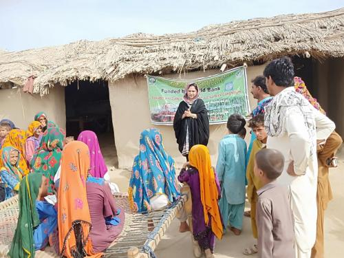 Farmer field school of women conducted by Ms. Noreen, Social Development Specialist Sukkur visited demo plot of cotton