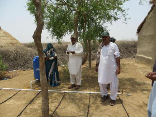 KG Drip kits under Installation at Chachro District Mithi.