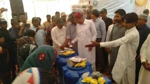 Kitchen gardening kits distribution ceremony on 13.4.2019 at SIAPEP Stall  (Blooming thar Exhibition) Mithi, Distt. Thapakar. Inaugrated & distributed by Mr. Muhammad Ismail  Rahu Minister Agriculture,  Supply & Prices, Govt: of Sindh