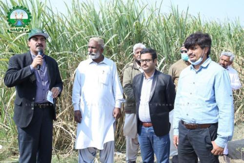 SIAPEP Exposure Visit Regarding HIES At Janjua Farm, Shadi Laaj