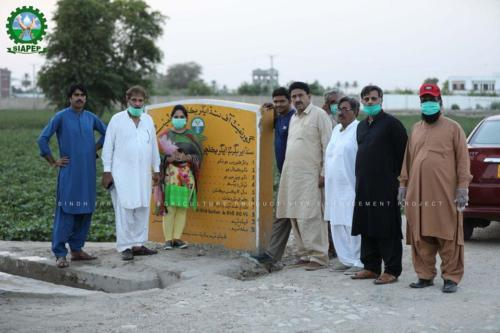Siapep activities in district Sukkur, Visited & Documented by PIU-SIAPEP Team on 23-July-2020