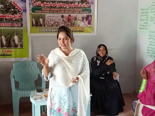 Women session & participation at FFS Demo for Cotton Crop at W/C 2 AL Hadeki minor, Tando Allahyar on 26.7.2019